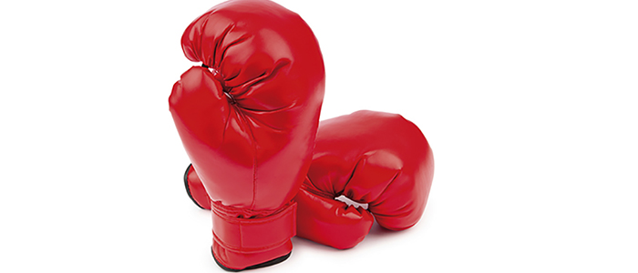 A pair of Red Boxing Gloves