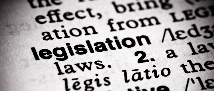 legislation in dictionary