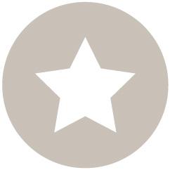 star icon grey