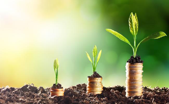 ESG Duties and Disclosures