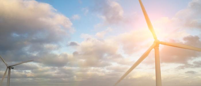 Vietnam offshore wind report 2020